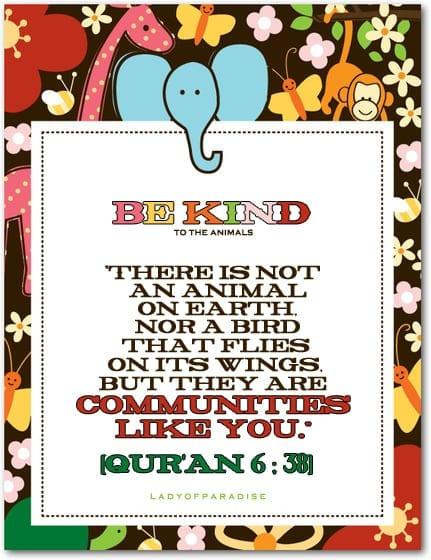 Birds in Islam