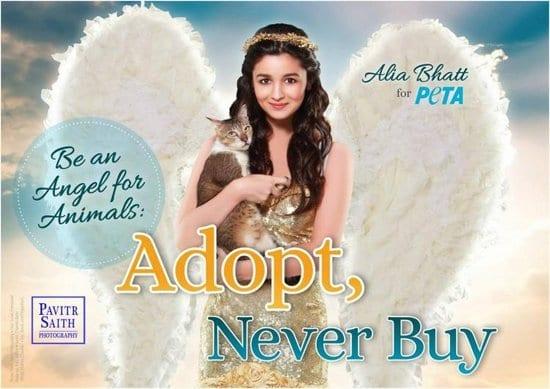 Alia Bhatt in an Adopt Cats Peta Ad